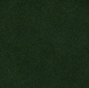 Тёмно-зеленая